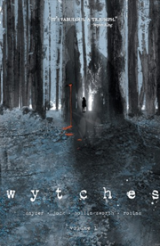 Wytches, Vol. 1 by Scott Snyder