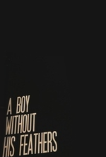 a-boy-without-his-feathers-by-beau-taplin