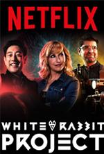 white-rabbit-project